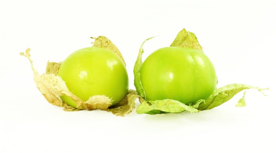 Tomatil, mehiški zeleni paradižnik