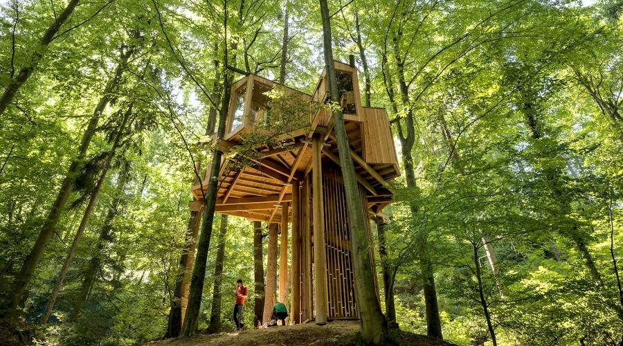 Drevesna hiša ali Planica za Plečnikovo nagrado 2016