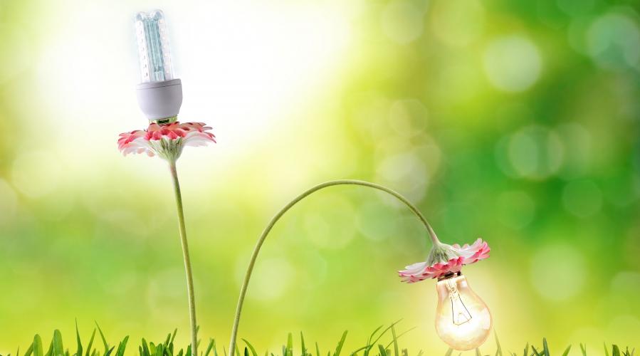 Junij, mesec energetske učinkovitosti v Zeleni prestolnici Evrope