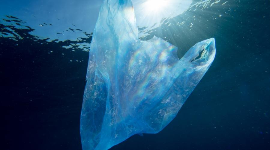 Svetovni dan oceanov: ogrožamo jih s plastiko