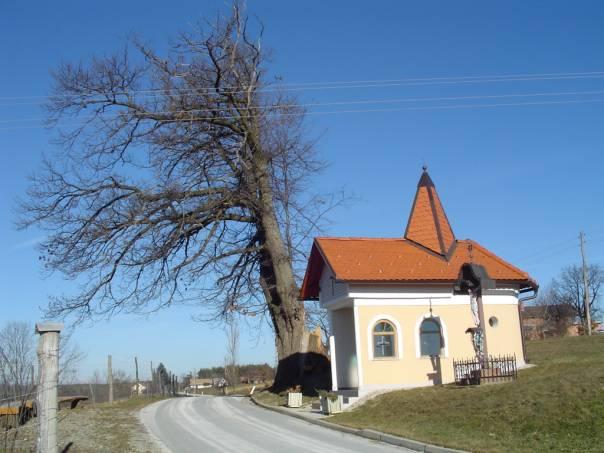 Skrajne točke Slovenije: Budinci, najsevernejše naselje