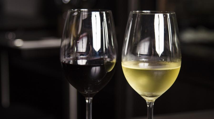 Ocenjevanje Vino Slovenija v Gornji Radgoni - tudi iz ekološko pridelanega grozdja