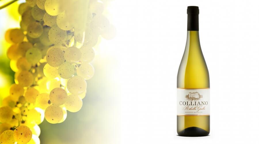 Slovensko vino z oznako »BEST BUY« med najboljšimi v Ameriki