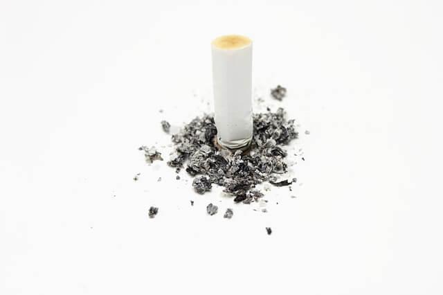 Delavnica Evropske mreže za preventivo pred kajenjem v Ljubljani