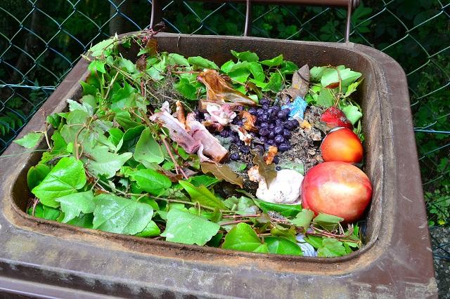 Lani zavrgli 18kg hrane na prebivalca več kot 2014