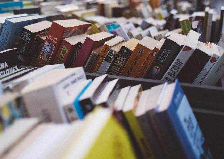 Knjige pod jelkami - knjižni sejem v Novi Gorici: knjiga je lahko lepo darilo