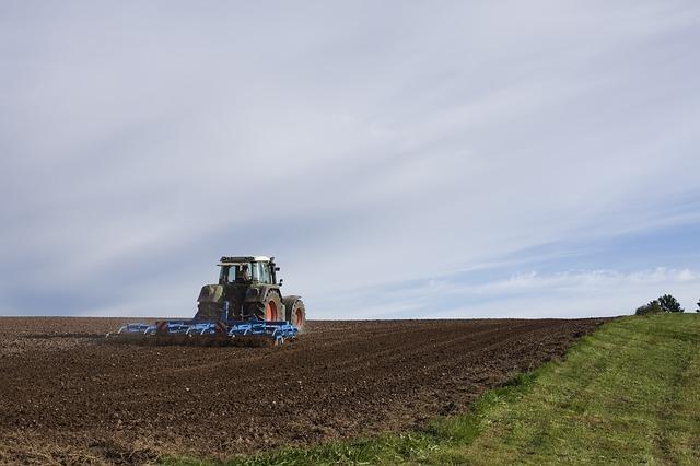 Obseg kmetijskih zemljišč se zmanjšuje na račin pozidave in zaraščanja - nov ukrep usmerjen proti zaraščanju