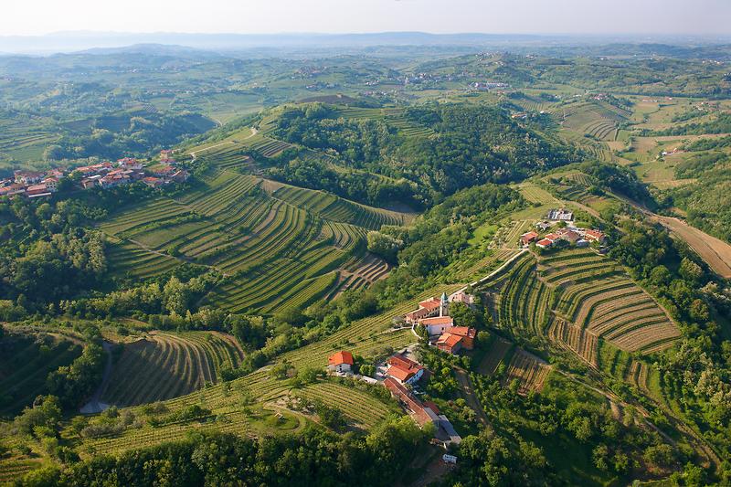 CNN Goriška Brda uvrstil med top 10 manj znanih, a zanimivih vinskih regij