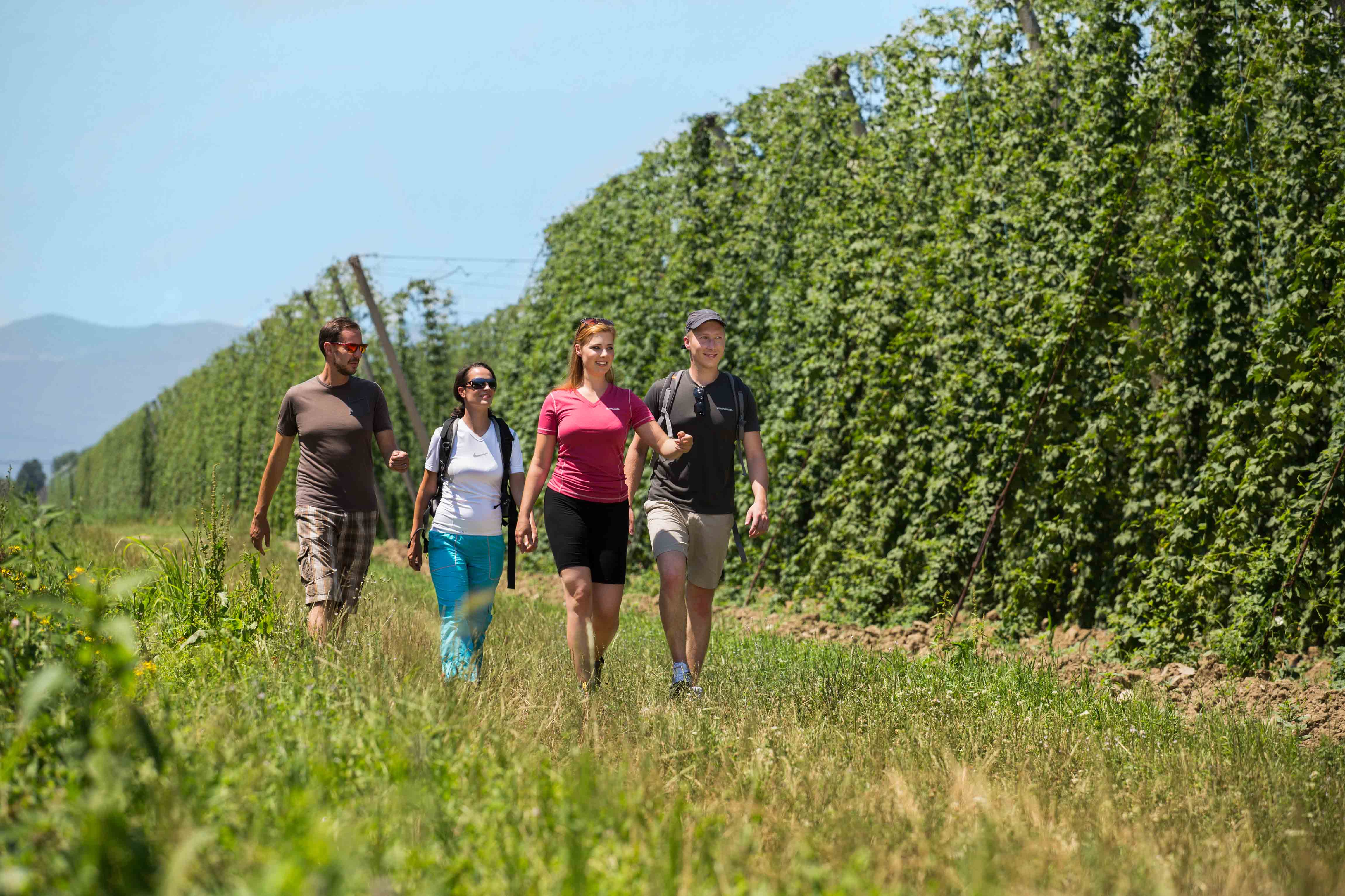 Izlet po Savinjski - Žalec: zgodba hmeljarstva in pivovarstva