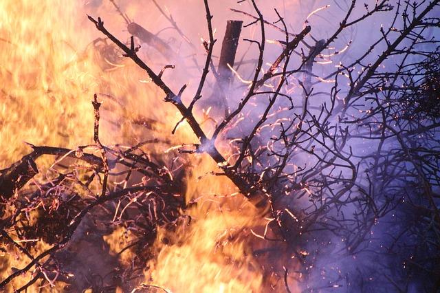 Zaradi suhega vremena večje število požarov