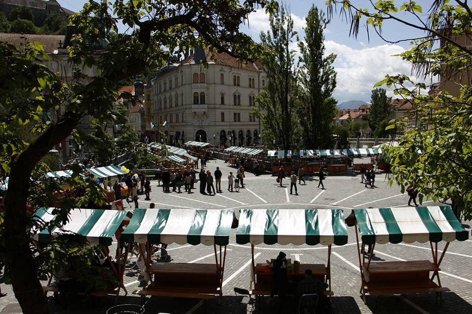 Nacionalni teden prostovoljstva: osrednji dogodek v Ljubljani, slovesnost v Gornji Radgoni