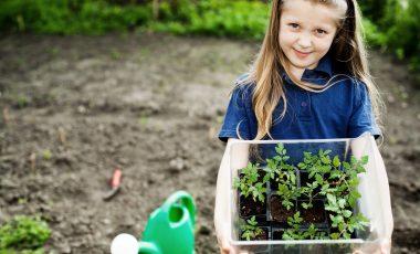 Najboljši nasveti za vrt: v aprilu hitimo, da vse postorimo
