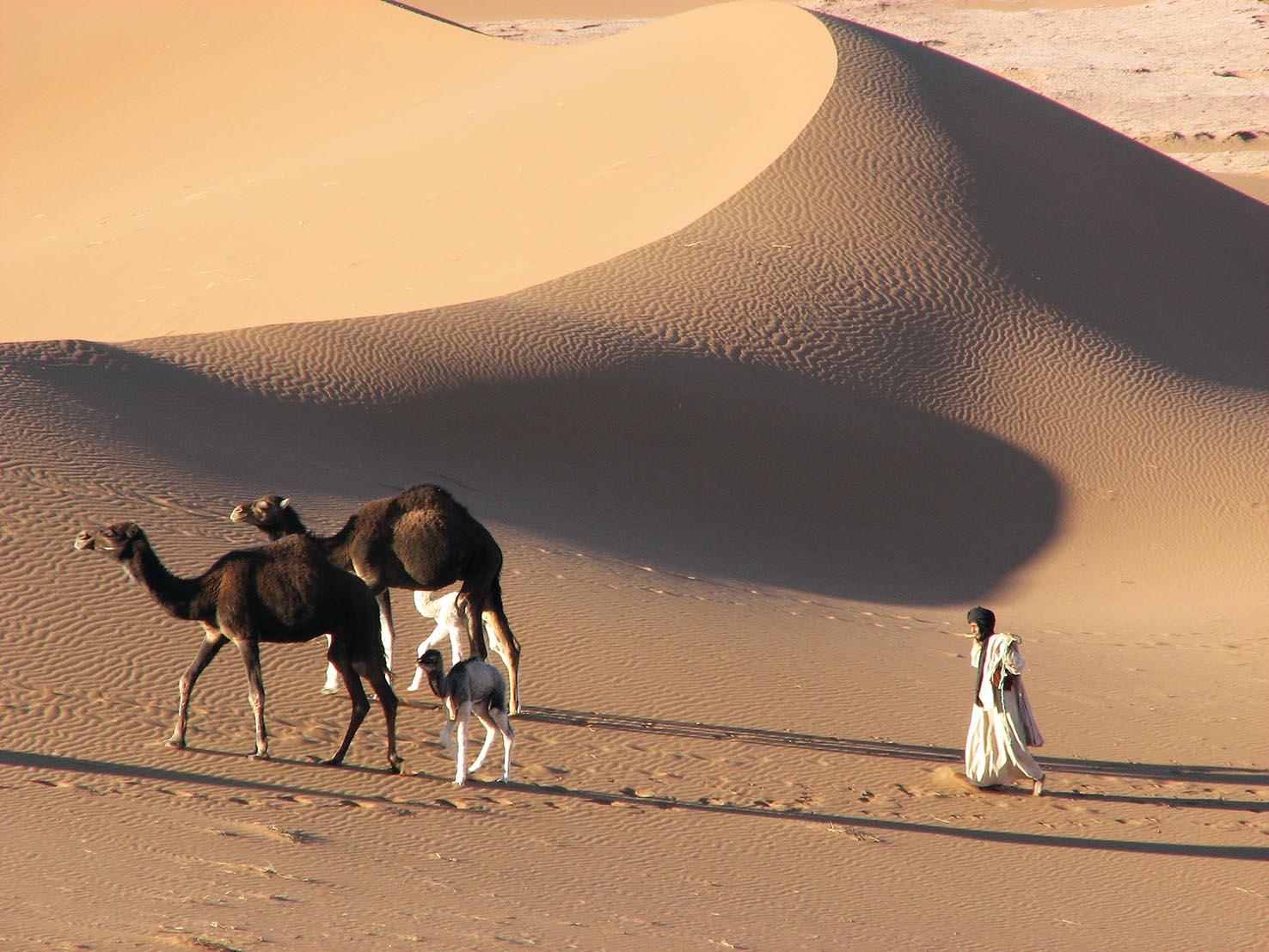Maroko - eksotika na vsakem koraku