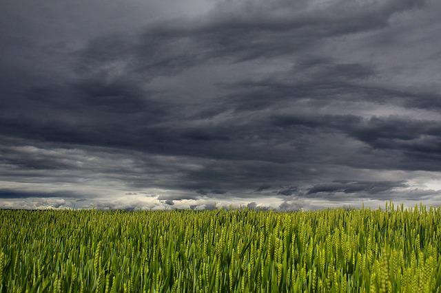 ARSO z novo agrometeorološko napovedjo v pomoč kmetovalcem