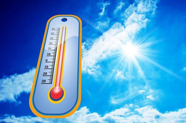 Ravnanje v vročih dneh