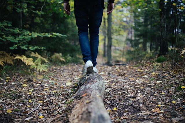Med trekingom ne pozabite občudovati narave