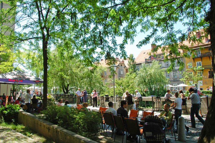 Pljuča mesta - drevesa v prestolnici
