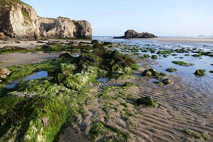 beach-1519042_web