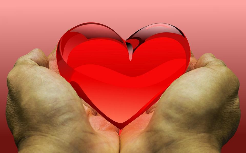 Evropski dan darovanja in presajanja organov