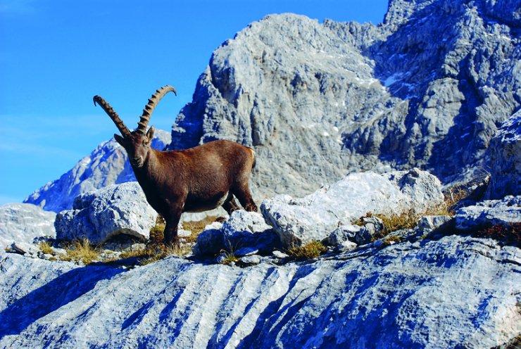 Julijske Alpe med najatraktivnejšimi destinacijami za 2018!