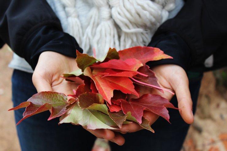 9 dekorativnih idej za jesensko pravljico