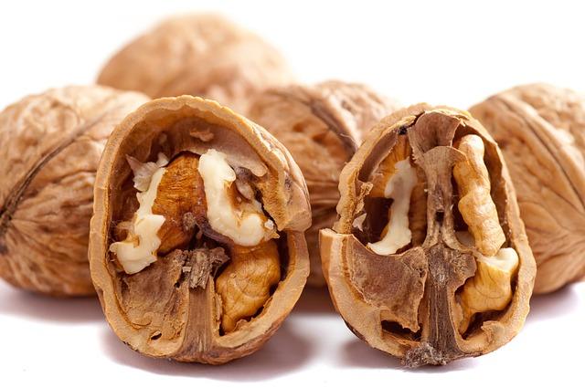 walnuts-2312506_640