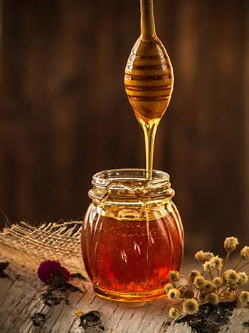 honey-1958464_web