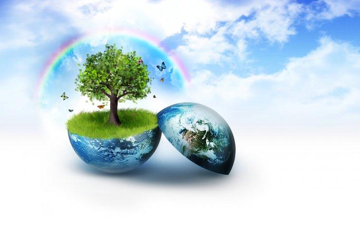 Bi morali polovico Zemlje prepustiti divjini?