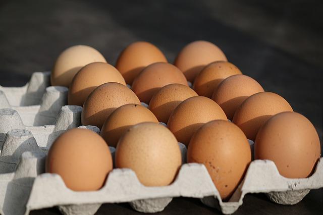 Kampanja proti baterijski reji jajc