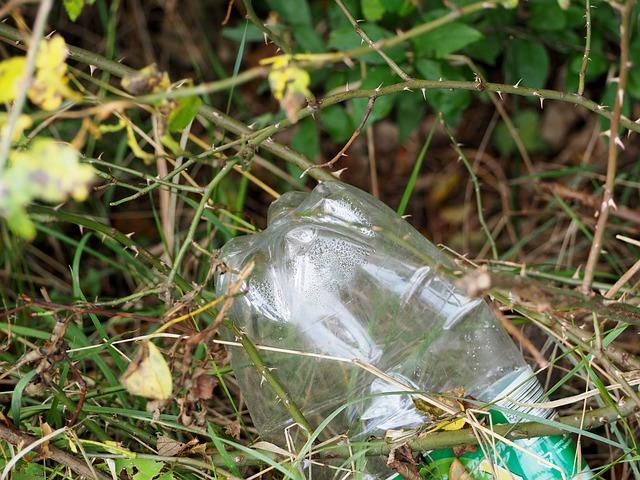 Burja razmetala odpadke po Vipavi, domačini takoj v čistilno akcijo!