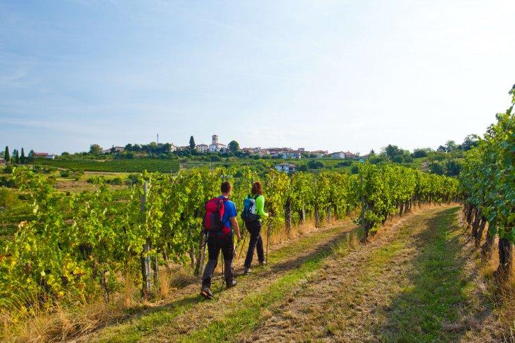 Na izlet v Goriška Brda: 5 očarljivih vasic