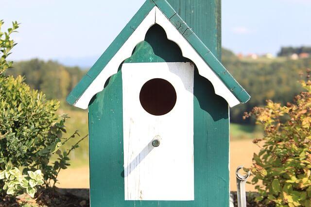 Dan za spremembe v Mariboru: izdelava ptičjih valilnic