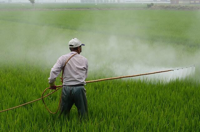 Ministrstvo opozarja glede nevarne rabe fitofarmacevtskih sredstev