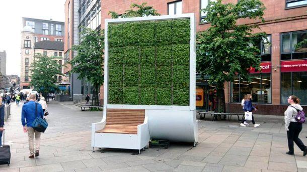 Klopca, ki čisti zrak tako učinkovito kot manjši gozd