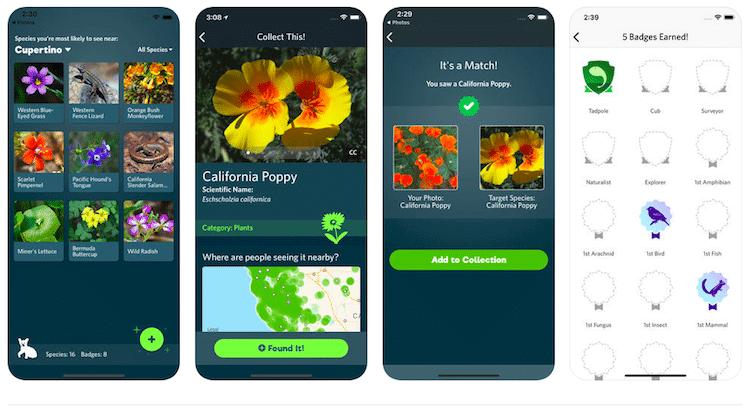 seek-app-2