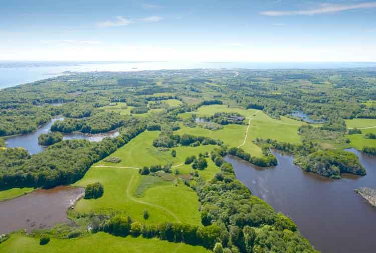 Danska dobila nov nacionalni park s 500 tisoč hektari gozda