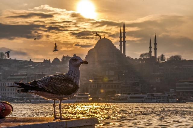 Sanjsko počitniško delo v Turčiji