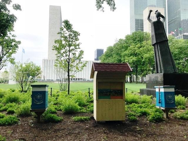 Slovenski čebelnjak v New Yorku, na sedežu OZN