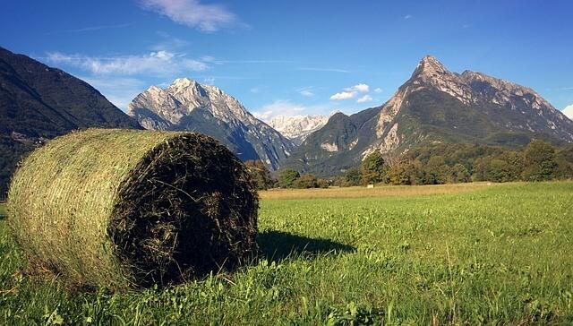 Kupljenik, Bled, Radovljica, slovenske eko kmetije ... med top 20 počitnic v osrednji Evropi