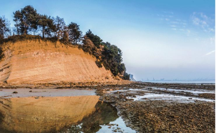 Krajinski park Debeli rtič je v enem mesecu dobil več kot 1.000 zaveznikov