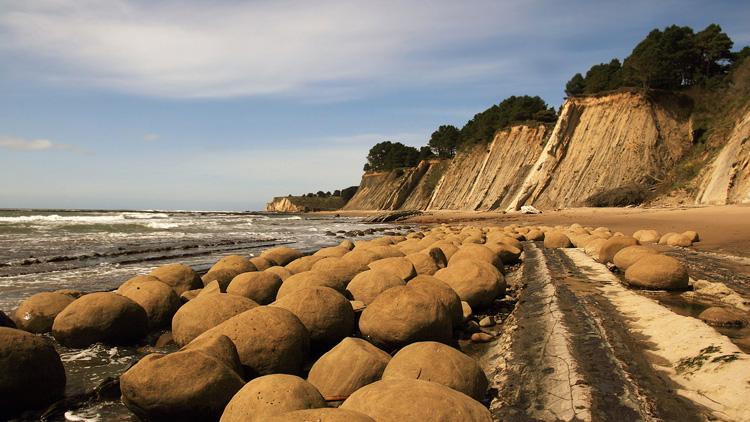 Skrivnostni živi kamni, ki rastejo in se premikajo