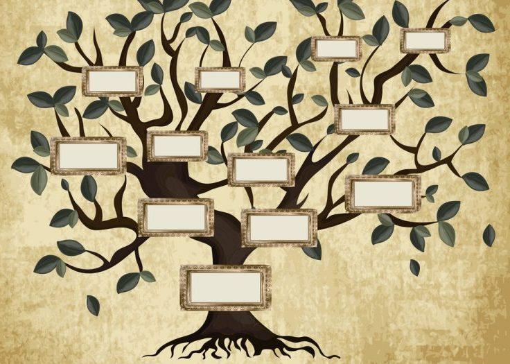 Projekt občine Zagorje: Razišči svoje korenine - smo vsi v sorodu?
