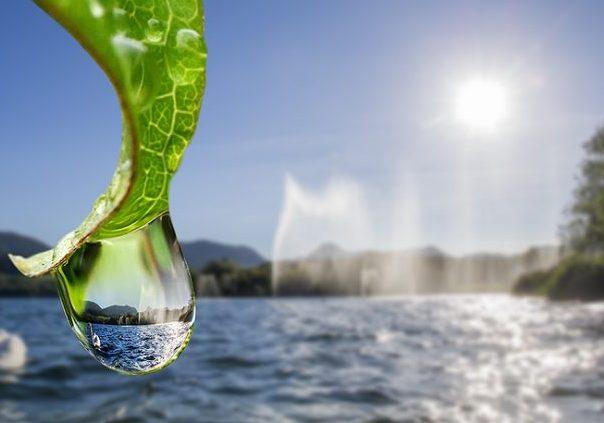 Svetovni dan voda: Voda za vse