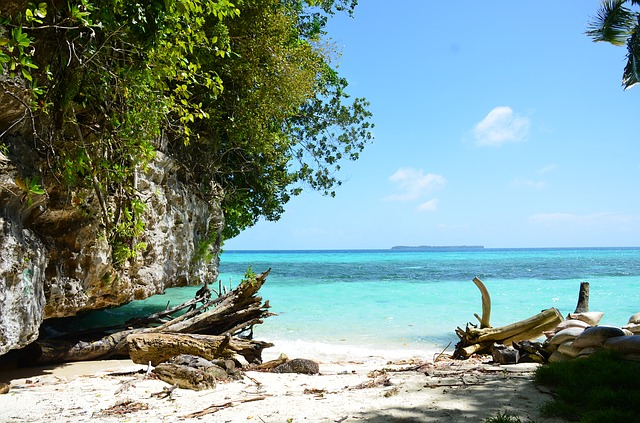 palau-beach-175138_640