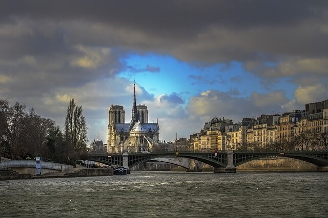 Kako so čebele preživele požar v Notre Dame katedrali?