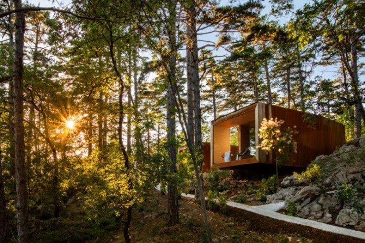 Finalisti Snovalec 2019: Sanje & aromaterapija & gozdna kopel v osrčju divjega gozda v Vipavski dolini