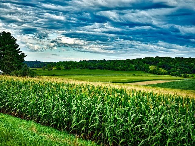 Plan B za Slovenijo poziva k okolju primernejši Skupni kmetijski politiki
