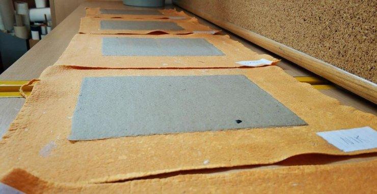 Jutri v Ljubljani delavnica izdelovanja papirja iz invazivnega japonskega dresnika