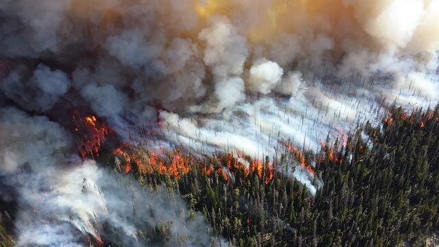 EU pred sezono gozdnih požarov vzpostavila prvo gasilsko floto
