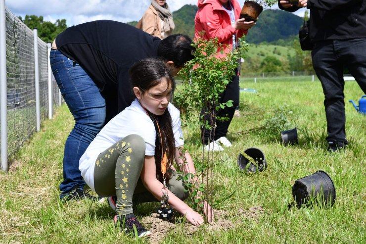 Največje črpališče pitne vode v Sloveniji postalo tudi čebelji pašnik